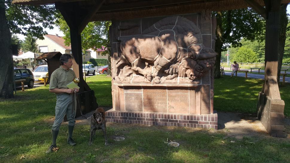 Sandstone bison, Jagdschloss Hubertusstock,