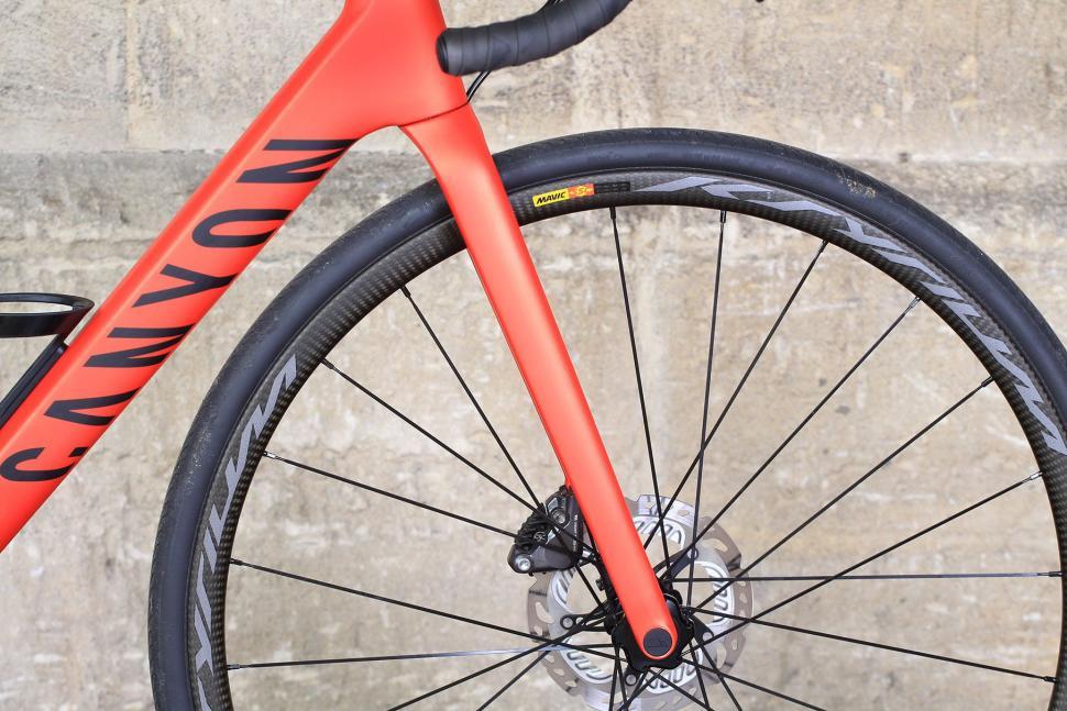 Canyon Endurace CF SLX - fork.jpg