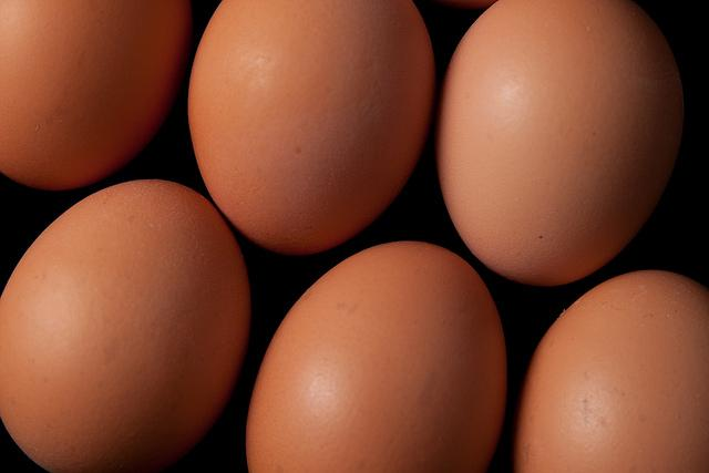 Eggs (licensed CC BY 2.0 by Phil Long on Flickr).jpg