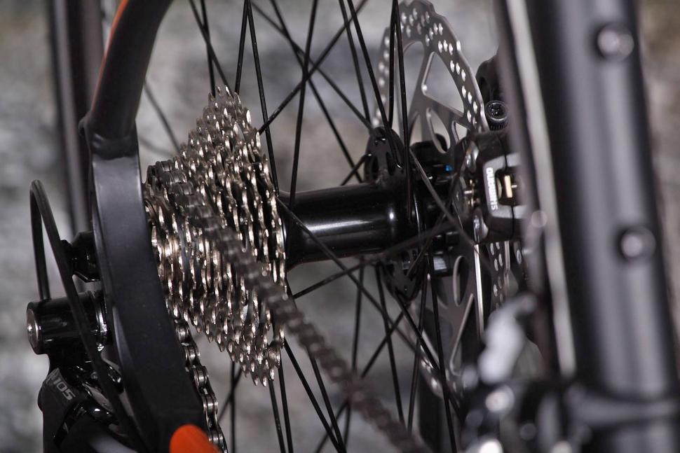 Forme Longcliffe Zero - rear hub.jpg