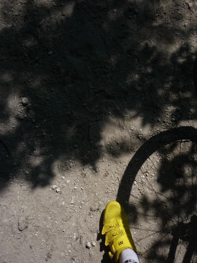 CrossShoe