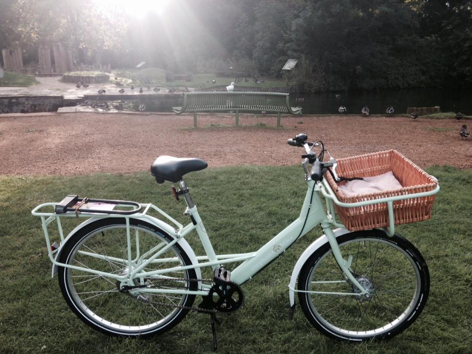 Elephant Bike 1