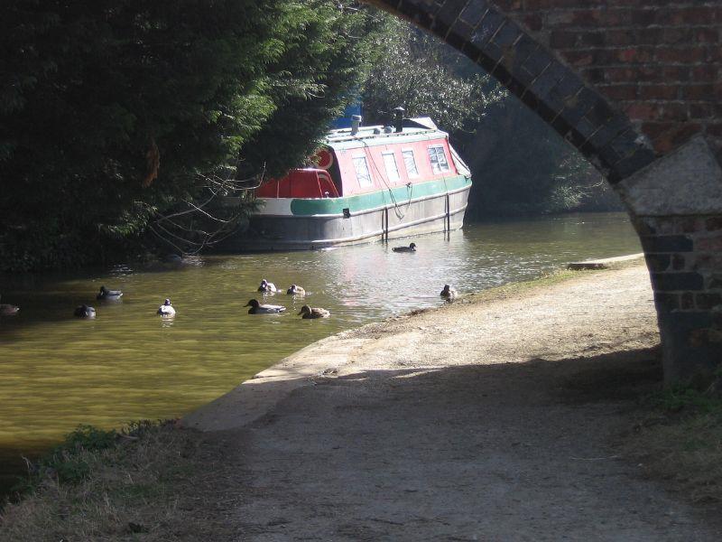 Oxford Canal (copyright Simon MacMichael)