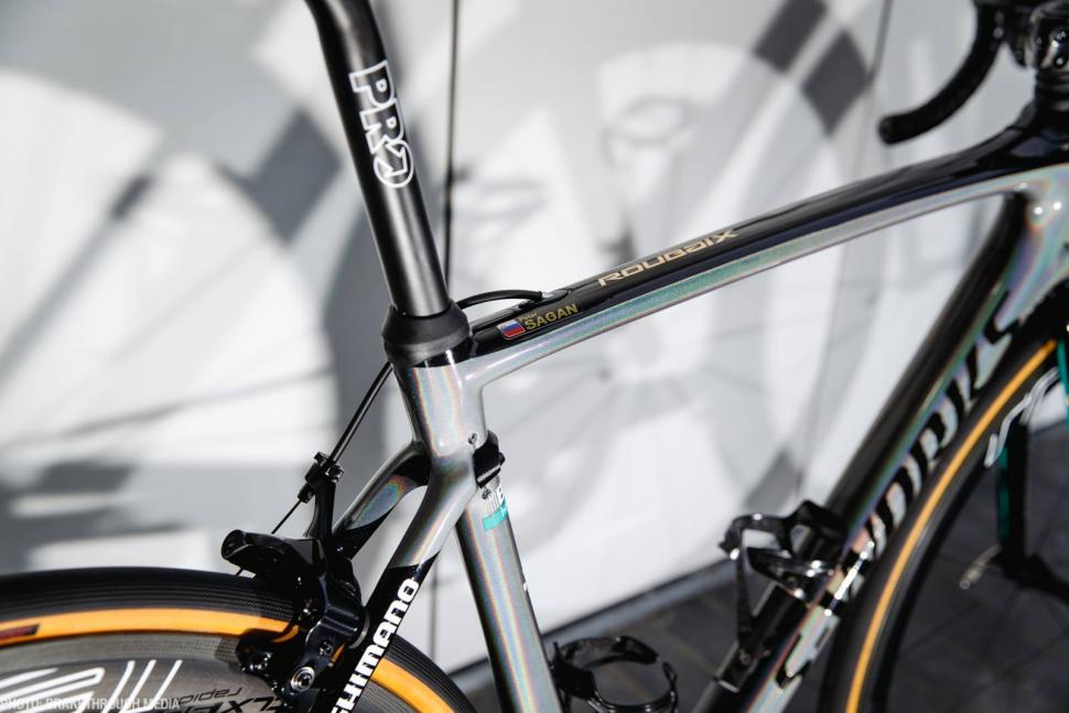 Pro Bike Peter Sagans ParisRoubaix Specialized SWorks Roubaix