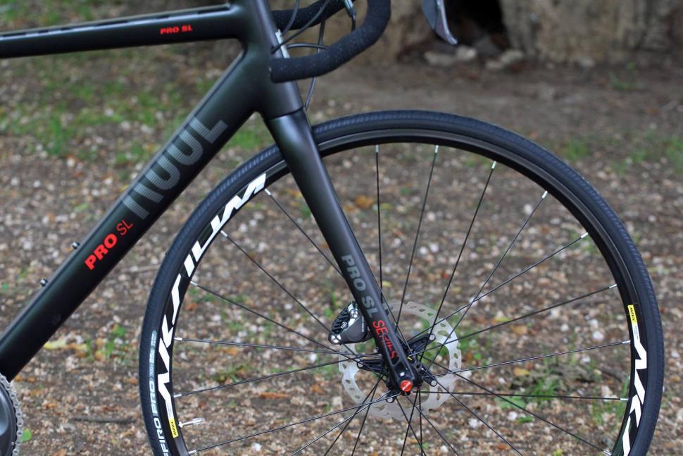 Rose Pro SL - fork.jpg