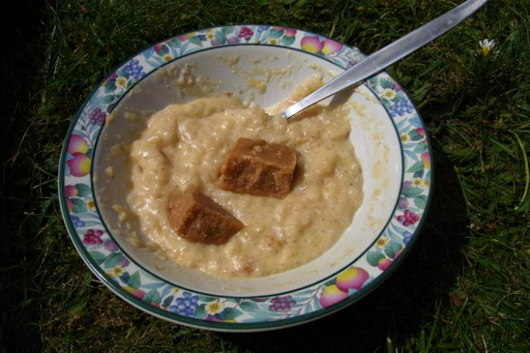 TRAT 2010 - rice pudding & tablet