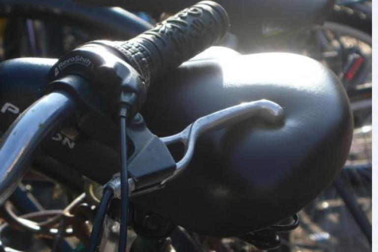 Brake lever (copyright Simon MacMichael)