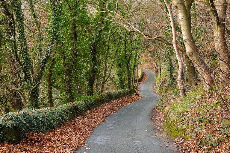 Long and winding road (CC licensed by Tim Green)