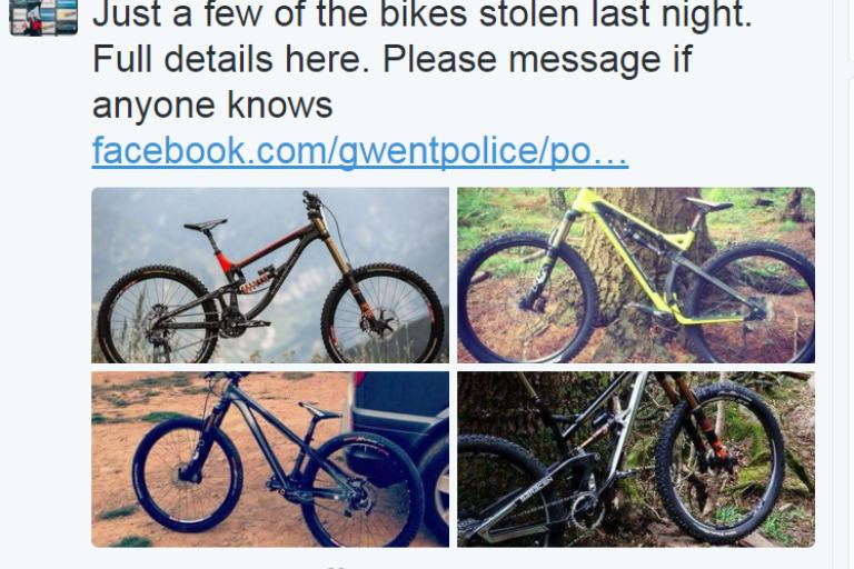 Manon Carpenter's stolen bicycles