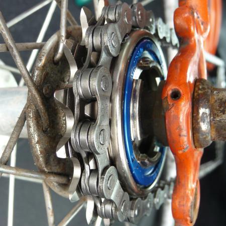 Freewheel (CC BY 2.0 Rex Roof Flickr).jpg