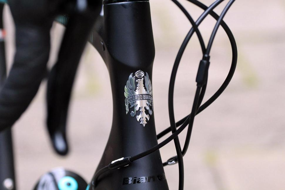 Bianchi Intenso Disc 105 - head tube badge.jpg