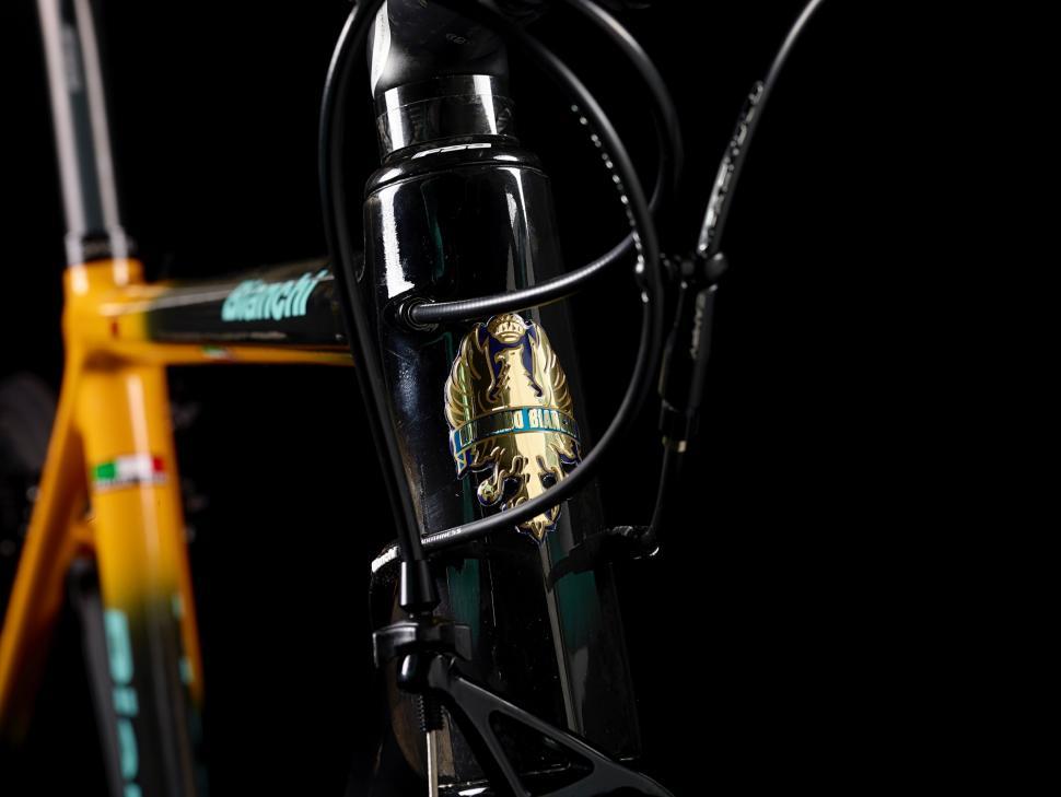 Bianchi Specialissima Pantani Oropa - 6.jpg