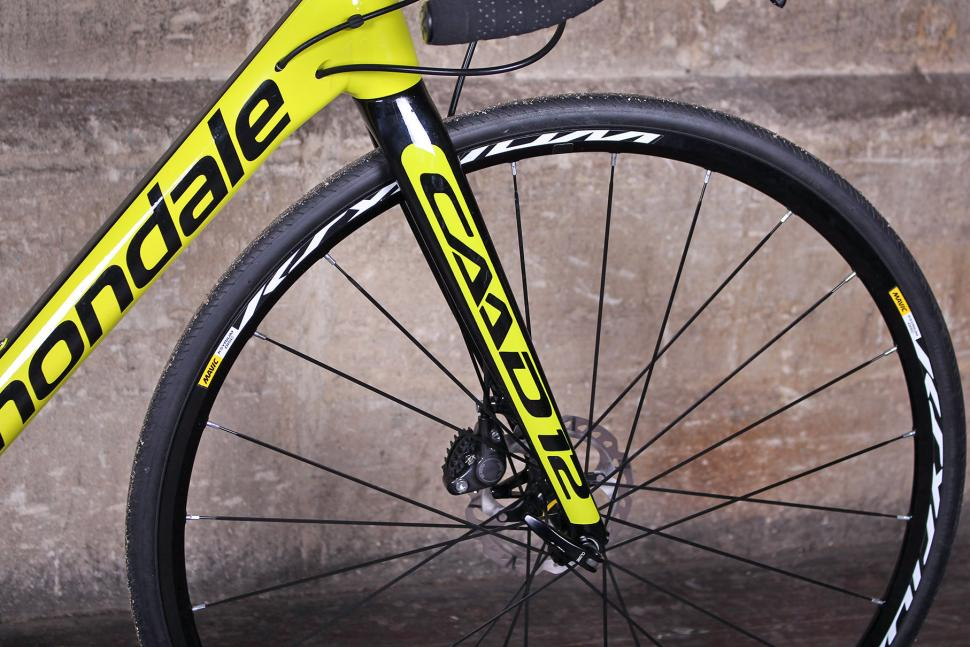 Cannondale CAAD12 Disc - fork.jpg