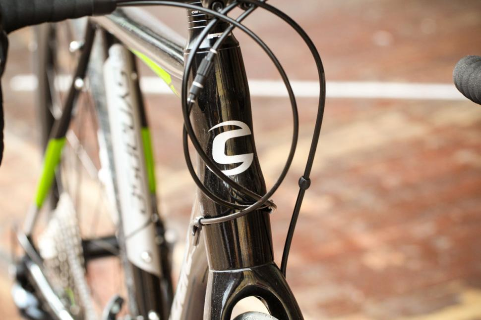 cannondale_synapse_disc_sora_-_head_tube_badge.jpg