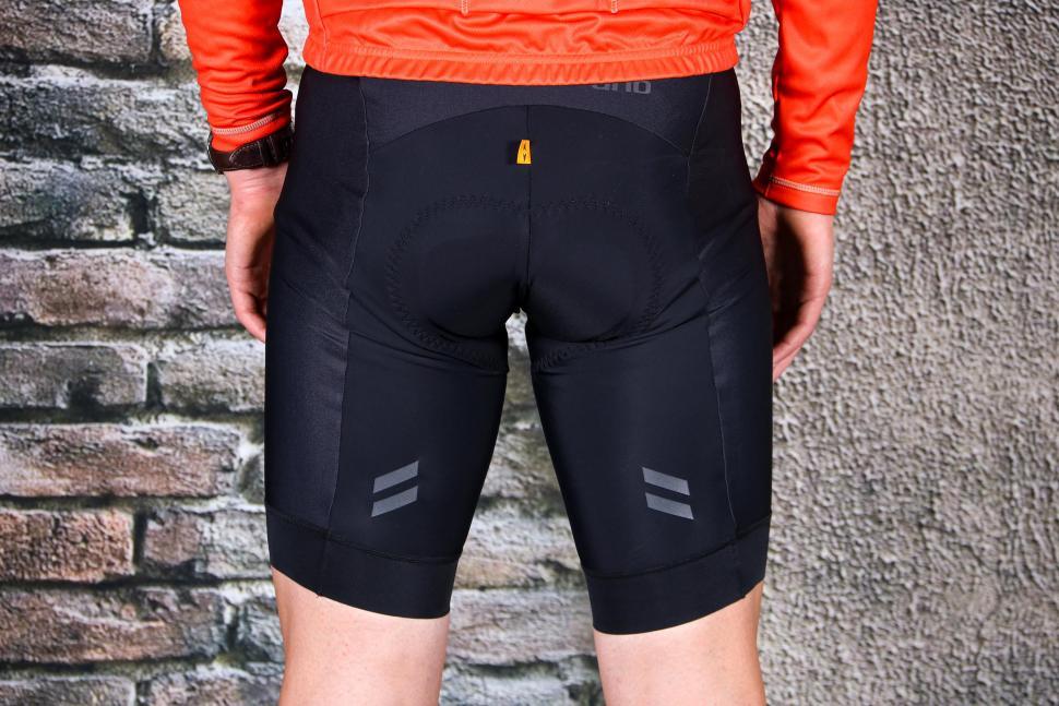 dhb Aeron Equinox bib Shorts - back.jpg