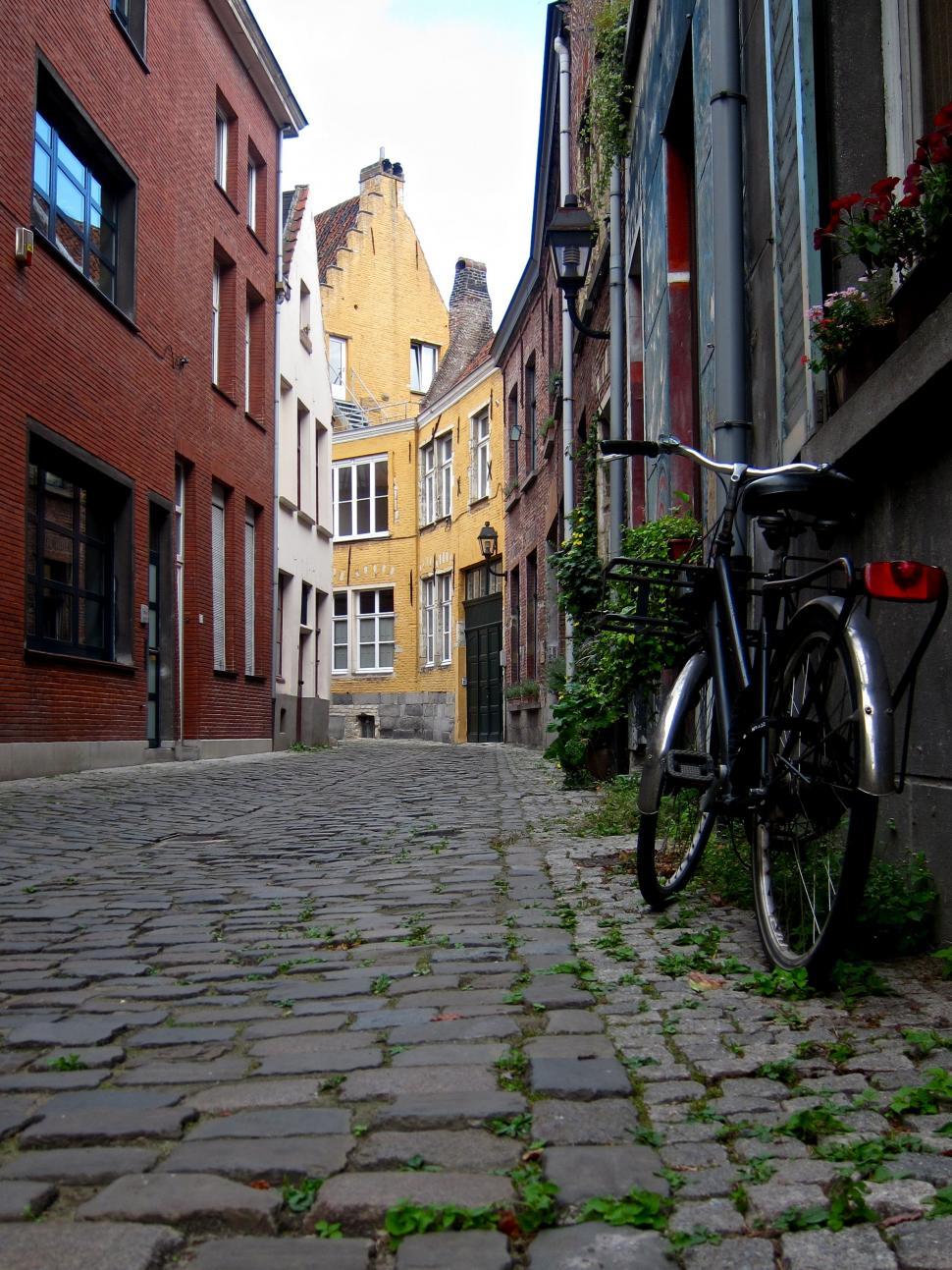 FlandersSummer - Backstreet.jpg