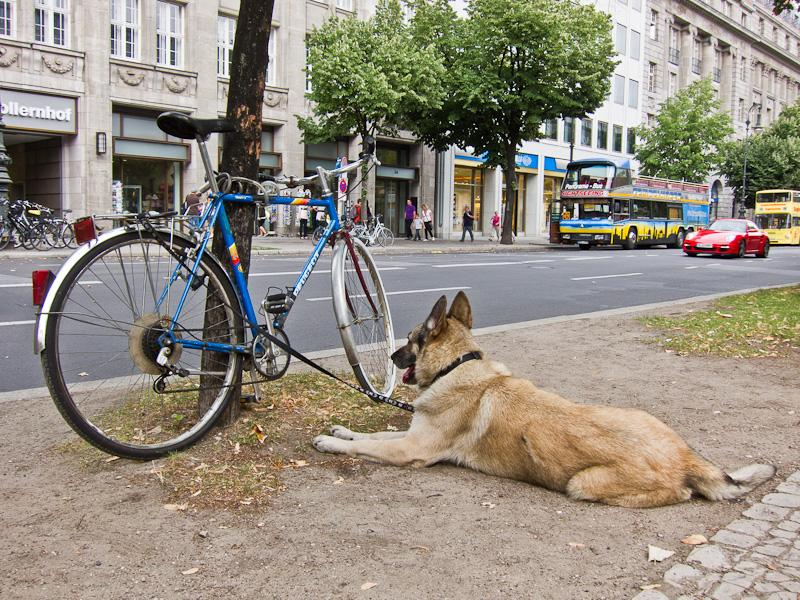 Furry bike security