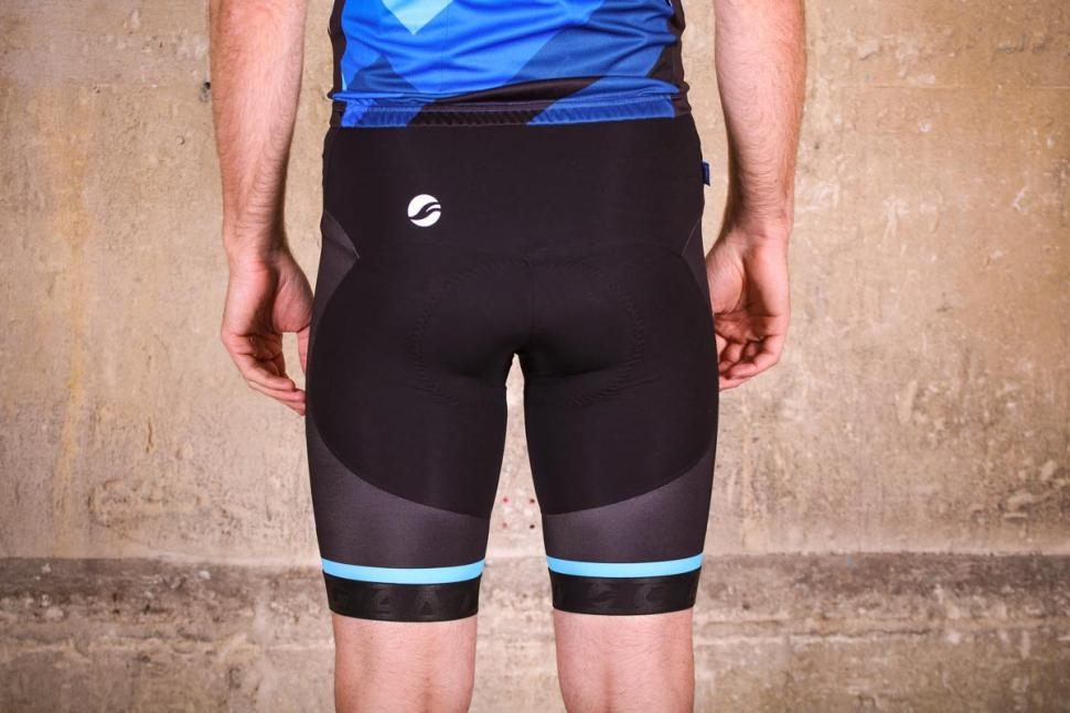 giant_elevate_bib_shorts_-_rear.jpg
