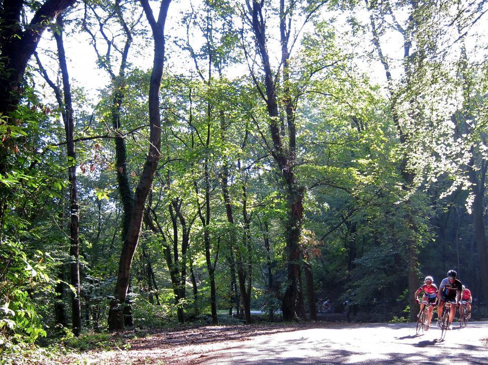 Granfondo Tre Valli Varesine - Dappled.jpg