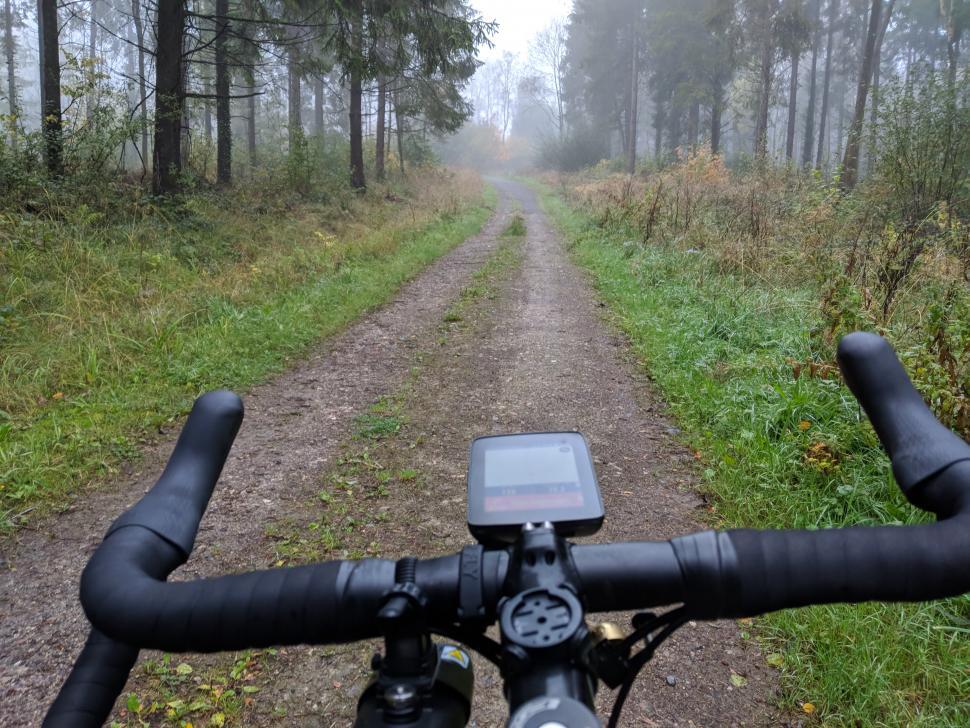 Hammerhead Karoo - forest track.jpg