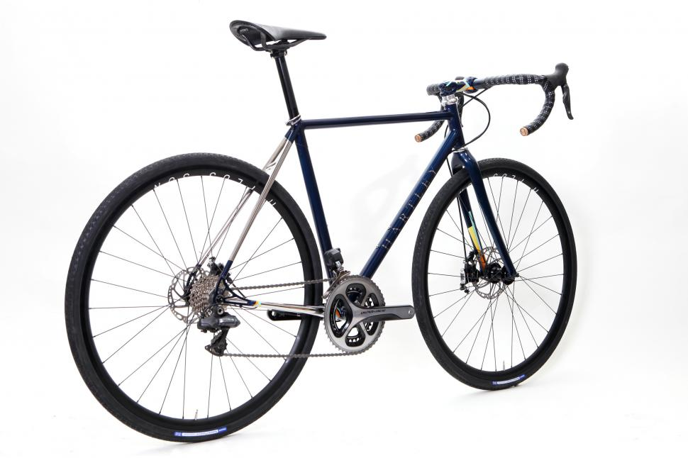 Hartley Cycles- Back view DM bike.jpg