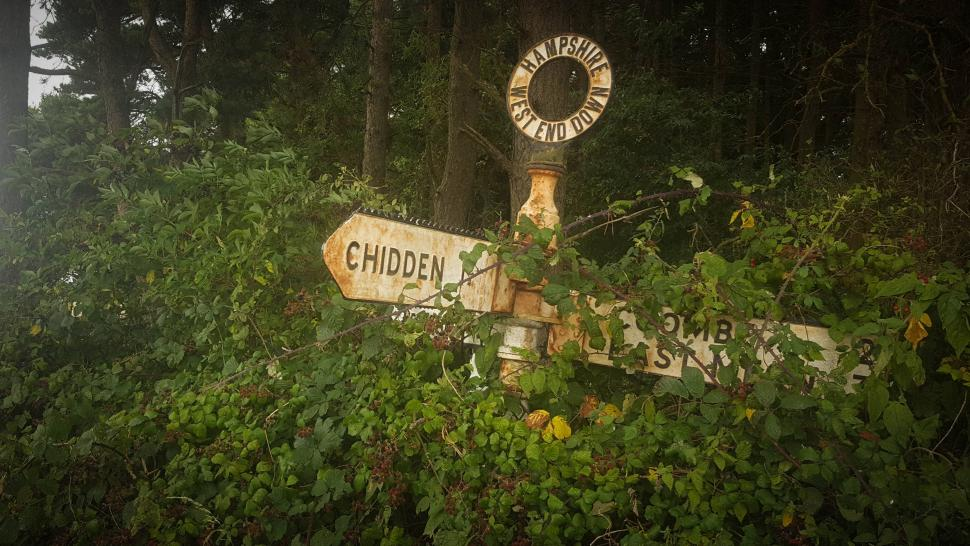 Here be Dragons - Chidden (photo ©Gavin Peacock) .jpg
