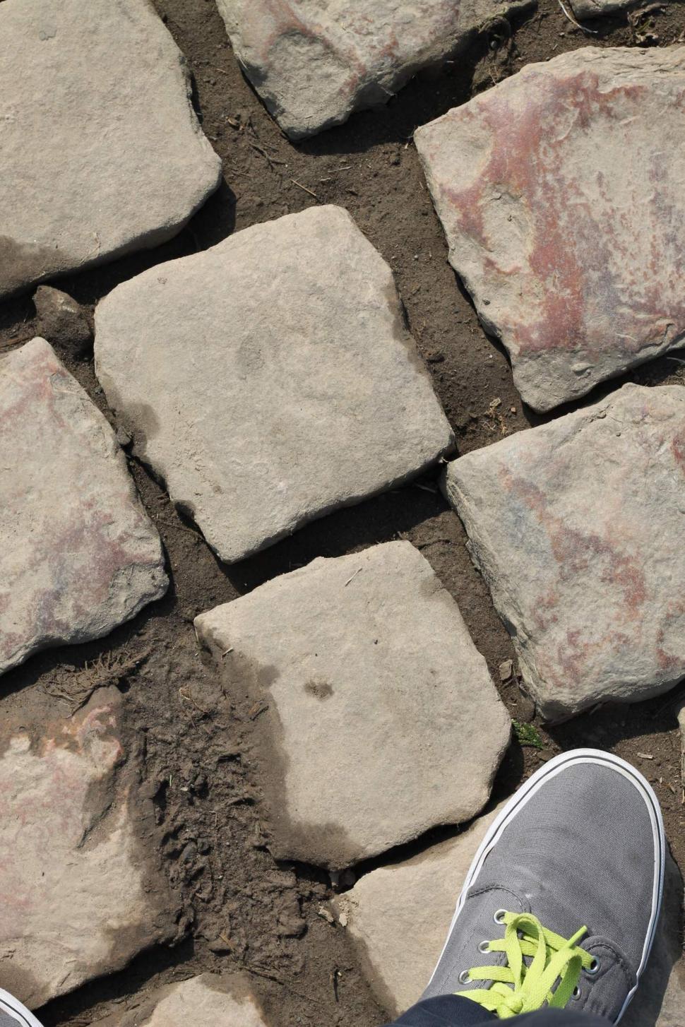 Paris roubaix standing on the cobbles