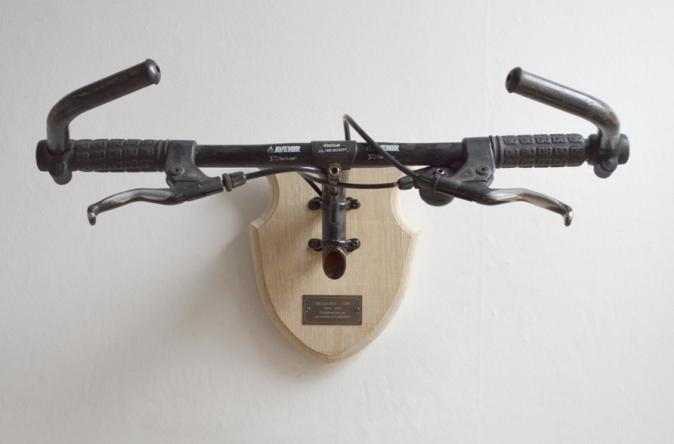 Bicycle Taxidermy Specialized-Diamondback
