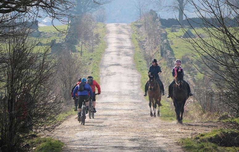 Horse riders' demands delay cycling reforms   road cc