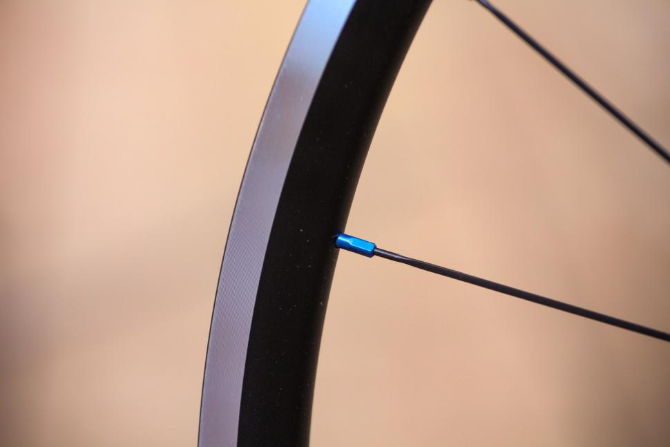 Just Riding Along Lark20 light road wheelset - spoke nipple.jpg