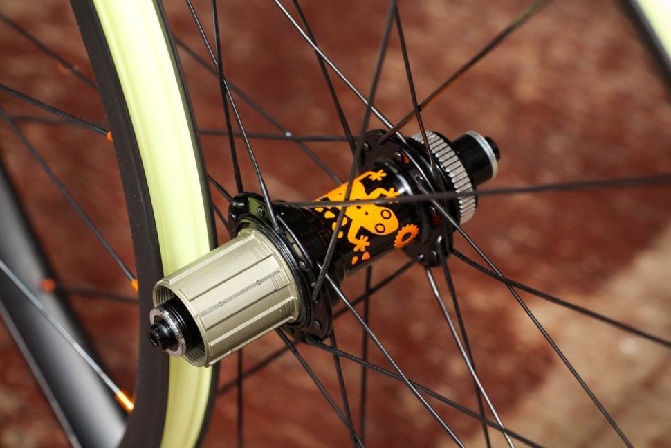 just_riding_along_gecko_carbon_wheelset_-_rear_hub.jpg