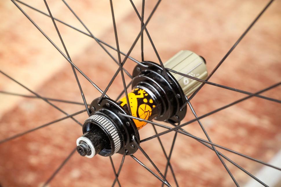 just_riding_along_gecko_carbon_wheelset_-_rear_hub_2.jpg
