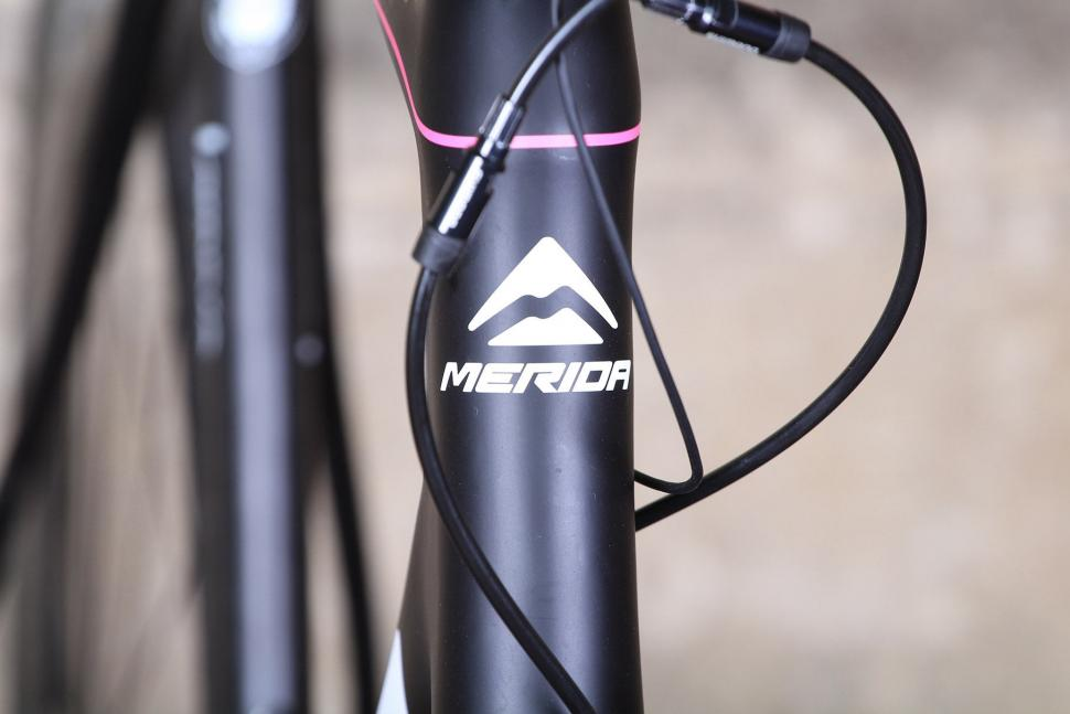 Merida Scultura Disc - head tube bedge.jpg