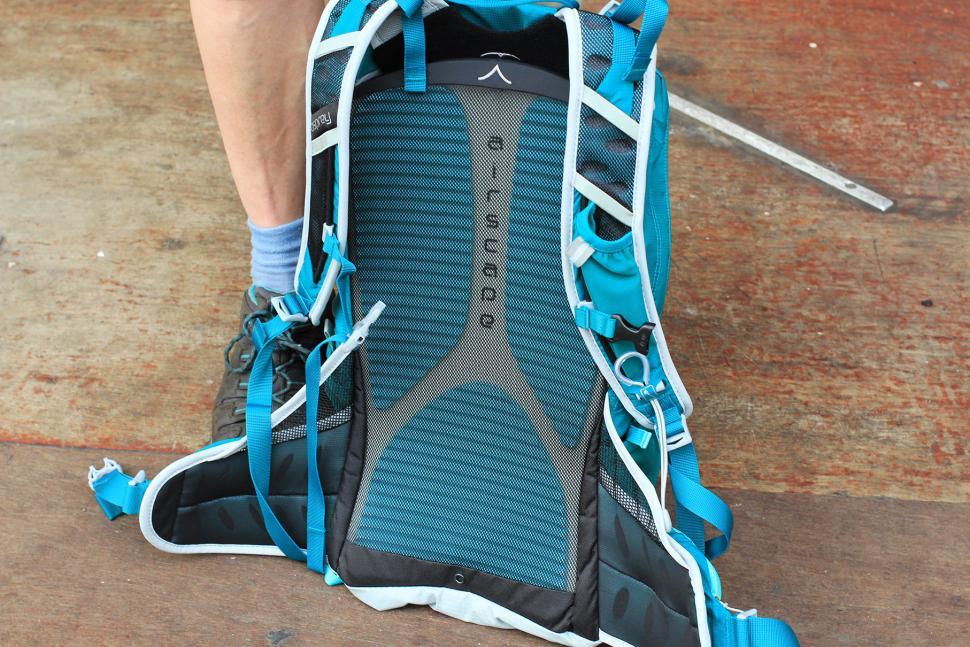 Osprey Tempest 20 Womens rucksack - back padding and mesh.jpg