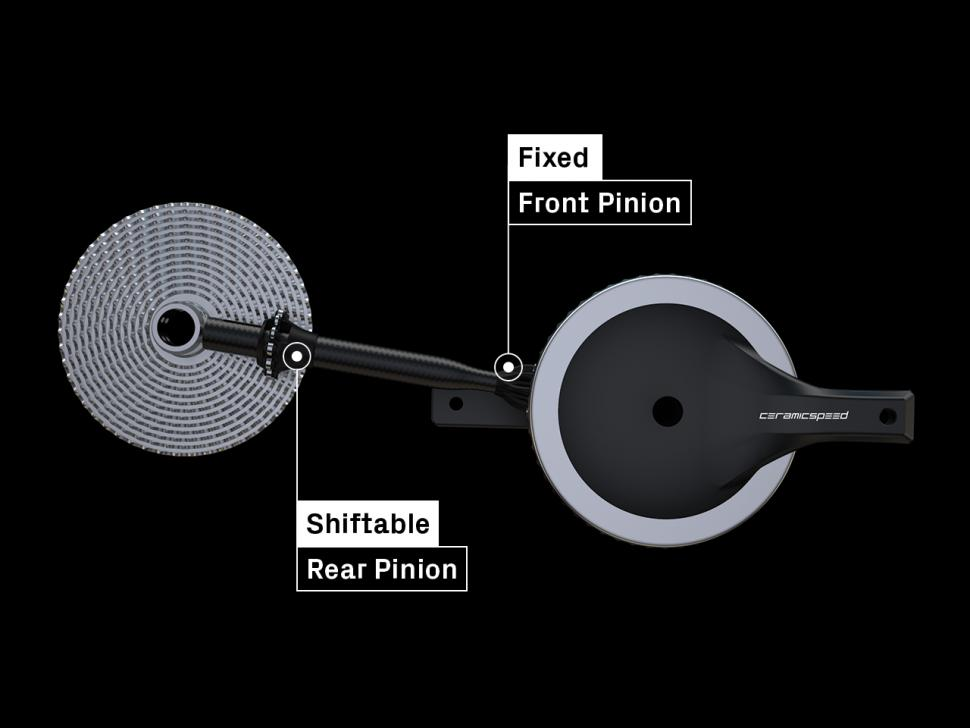 Pinion-Explainer