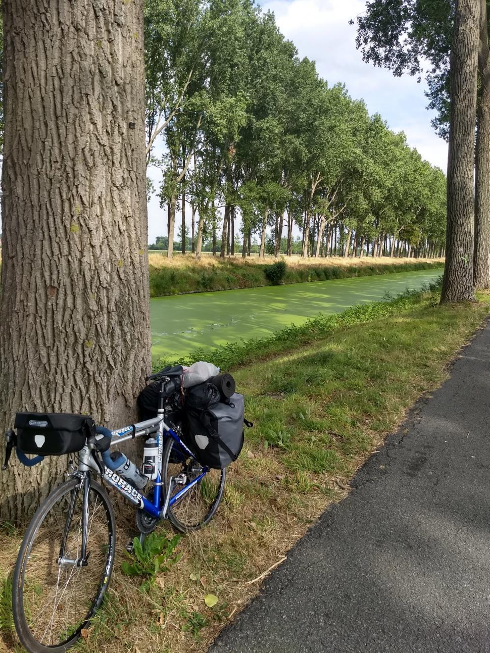 Schipdonk Canal, it's green!.jpg
