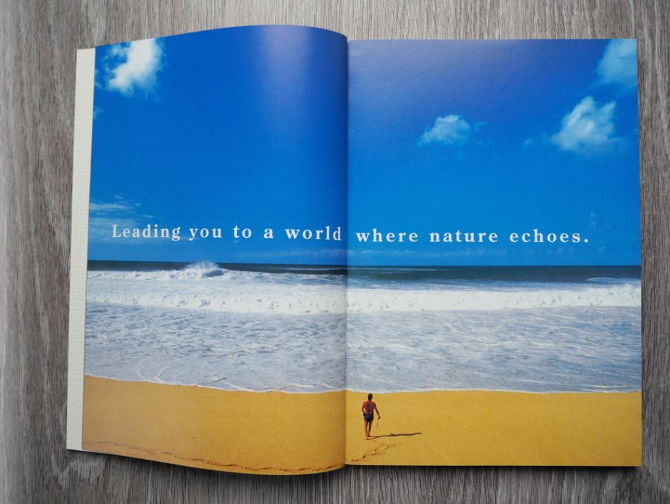 shimano natur.PNG