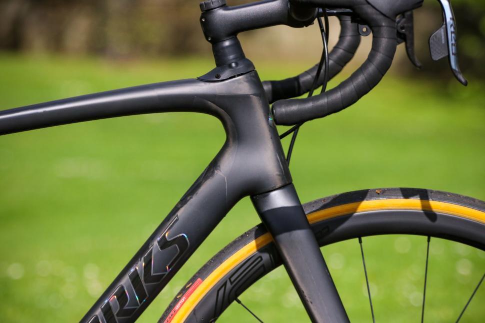 Specialized Roubaix - head tube.jpg