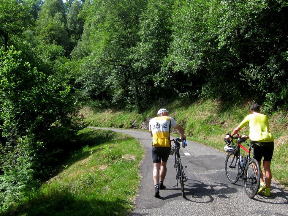 Tour De Force Part 2 - Peguere Walkers.jpg