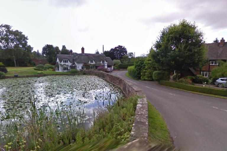 Badger, Shropshire (via StreetView)