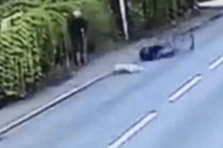 cyclist taken out by dog.png