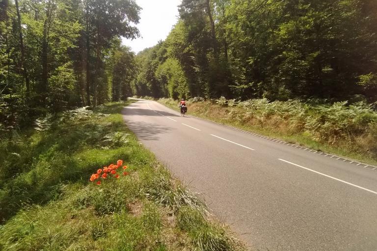 Hanau National Park.jpg