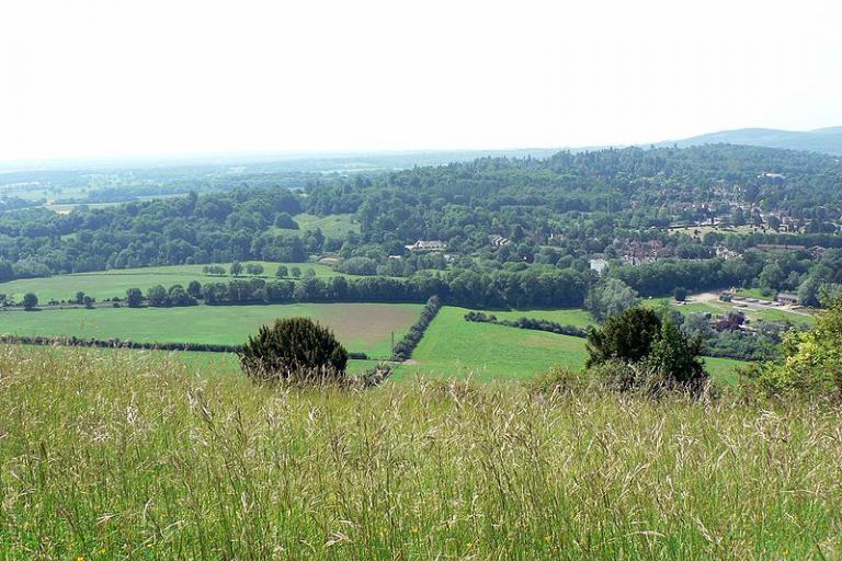 Box Hill, Surrey by lostajy.jpg