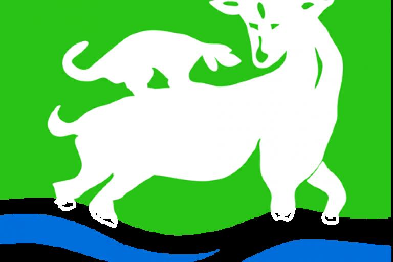 Hartlepool Borough Council logo (Credit: Timtastik)