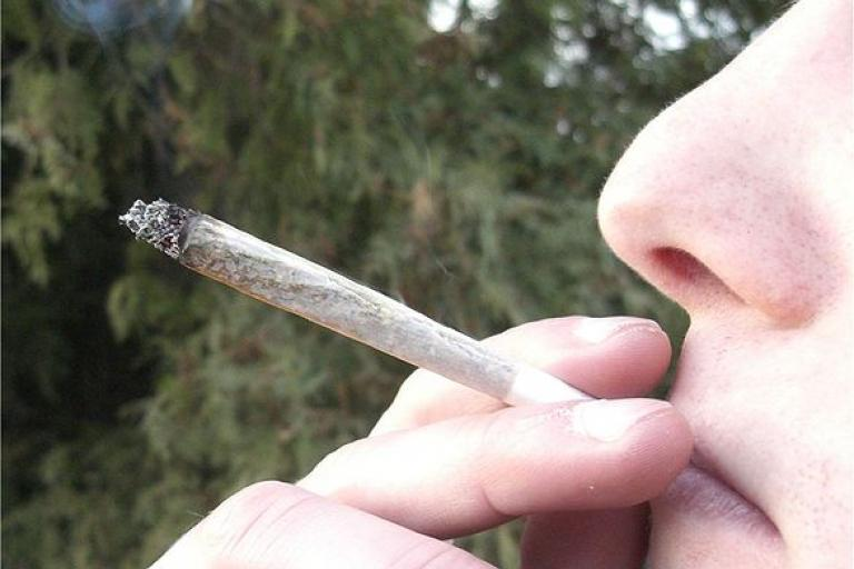 Joint (picture credit Chmee2:Wikimedia Commons).jpg
