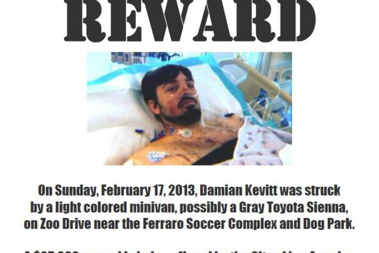 $25,000 reward in LA hit and run case (source Justin Hager, Facebook)