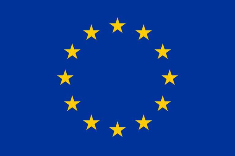 European Flag.jpg
