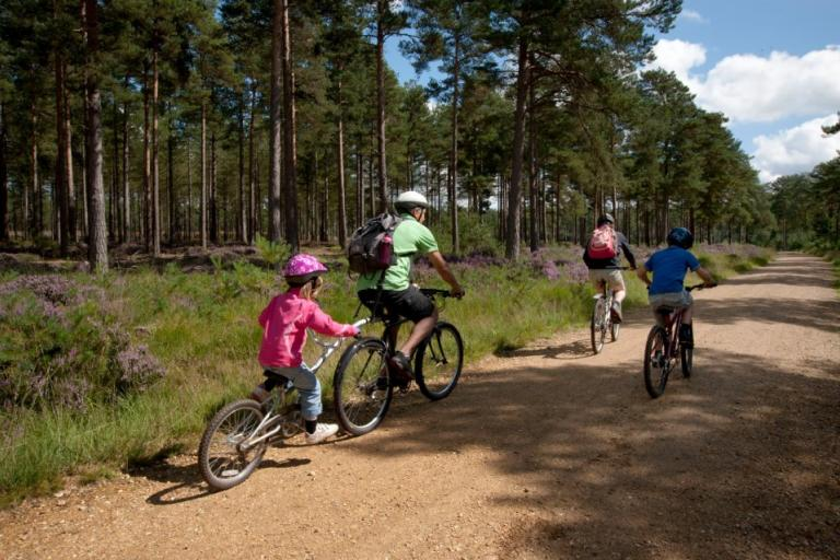 Family cycling at Moors Valley Country Park and Forest (source Facebook page)