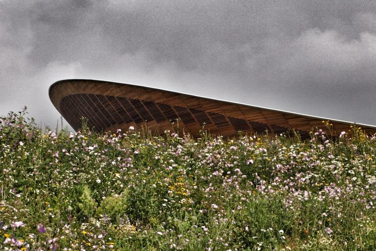 Olympic Velodrome and flowers (copyright Simon MacMichael)