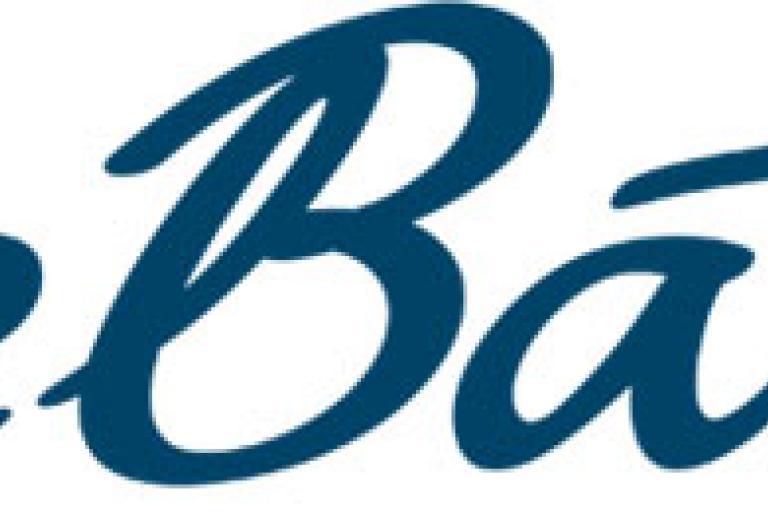 Bike Bath logo